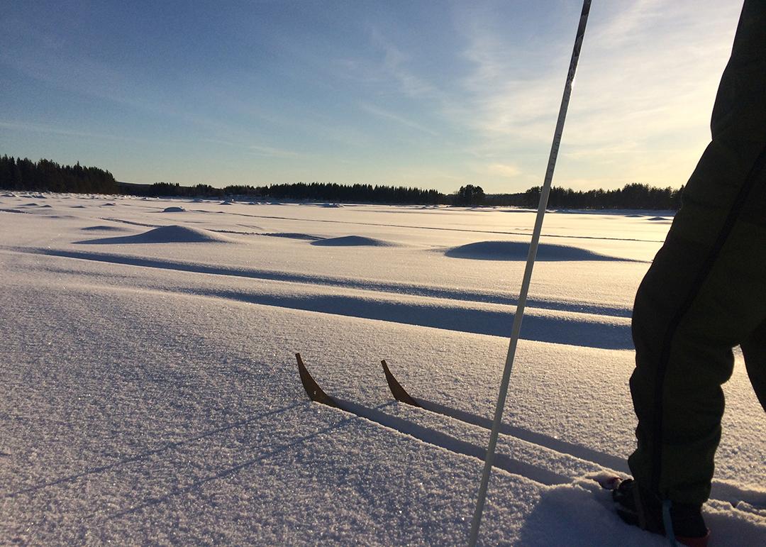 Skidåkning och snöskovandring
