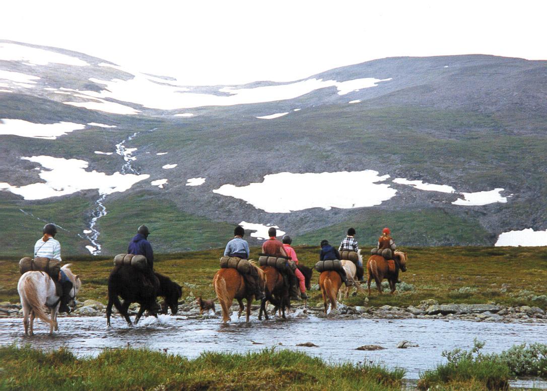 Hästridning i fjäll och skogsland